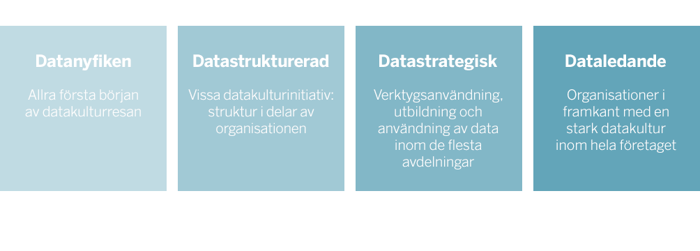 Datakultur-skala